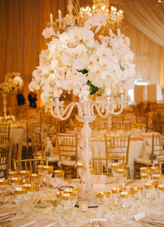 Wedding flower decoration ideas dover delaware de flowers and decoration service junglespirit Gallery